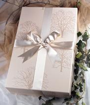 Cajas de conservacion para vestidos de novia